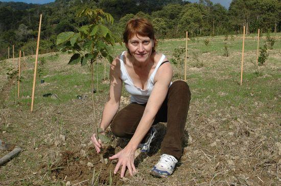 Participe do primeiro mutirão de neutralização de CO2 da campanha Miriam 4343