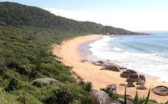 Ajude a salvar a praia de Taquarinhas