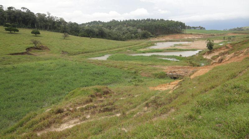 Áreas de plantação permanente