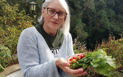 Semana do Alimento Orgânico