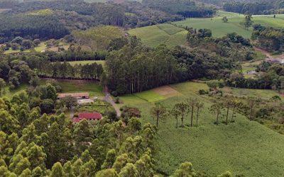 Santa Catarina aprova legislação para biogás