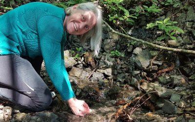 Propostas com foco na Mata Atlântica tem apoio de Miriam Prochnow, pré-candidata ao Senado pela Rede