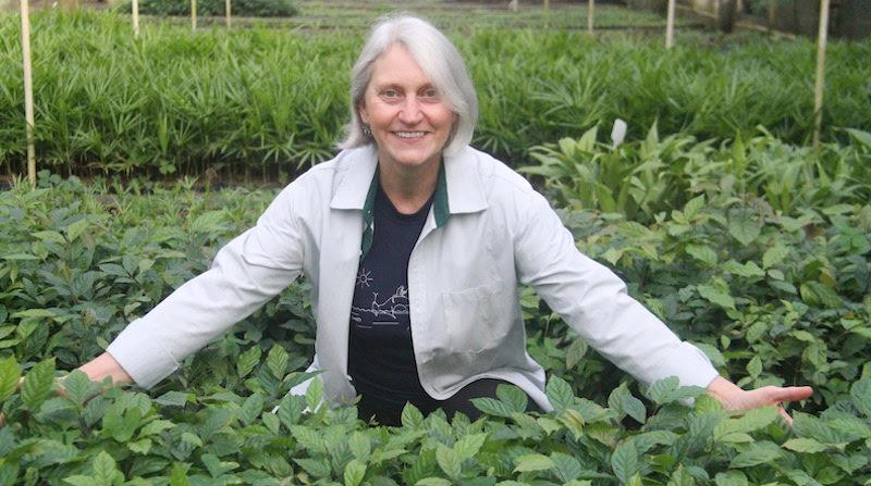 Miriam Prochnow: três décadas de luta em defesa do meio ambiente e da vida