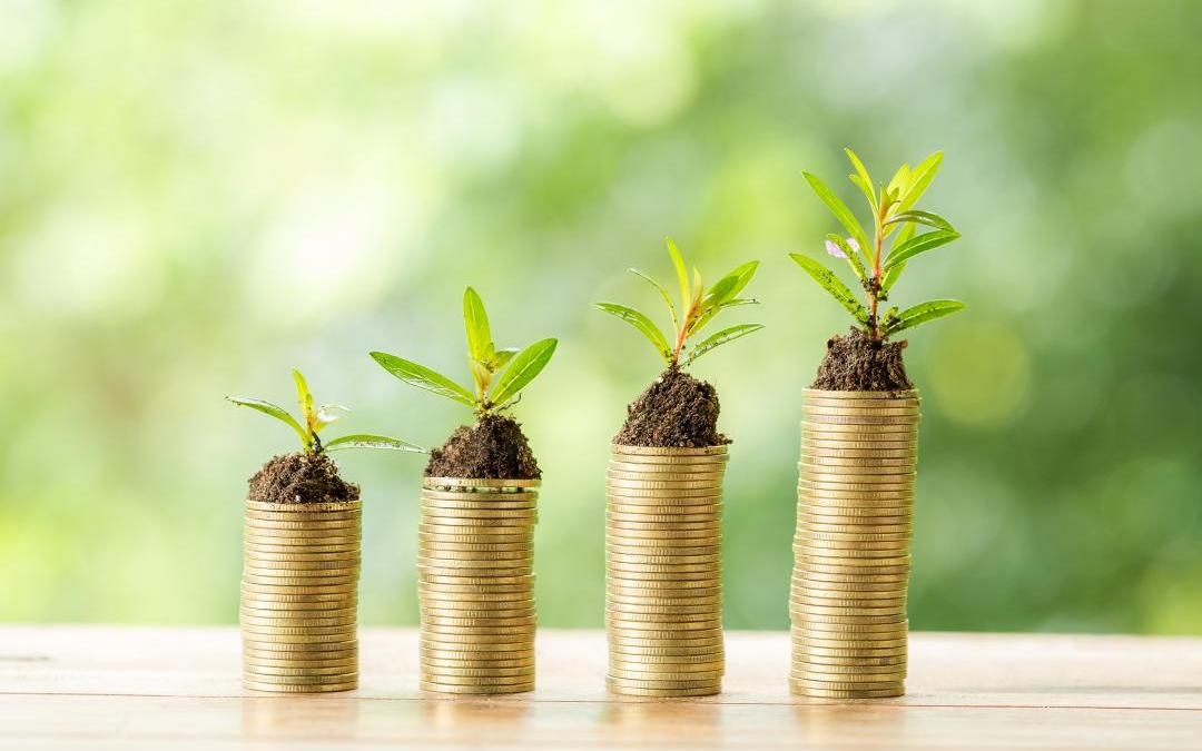 """Por que somente o investimento econômico em """"setores verdes"""" não basta?"""